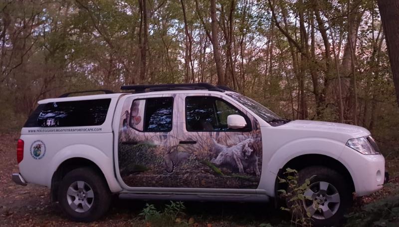 Noleggio furgoni trasporto cani – Nissan Navara_2