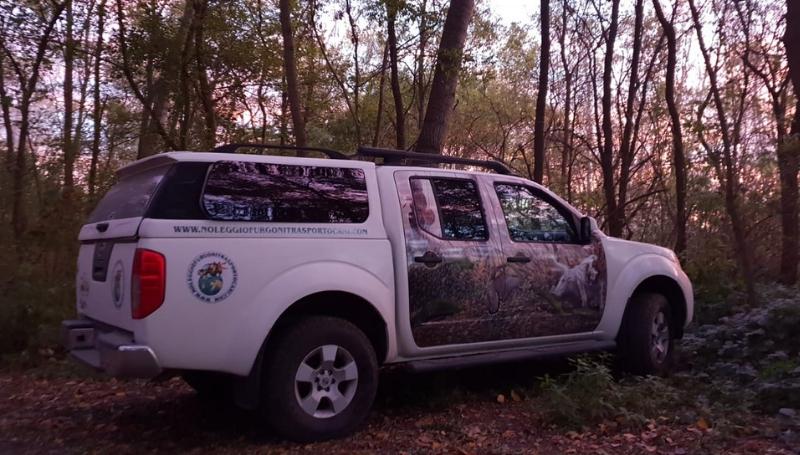 Noleggio furgoni trasporto cani – Nissan Navara_4