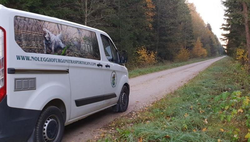 Ford Custom – Noleggio furgoni trasporto cani_9