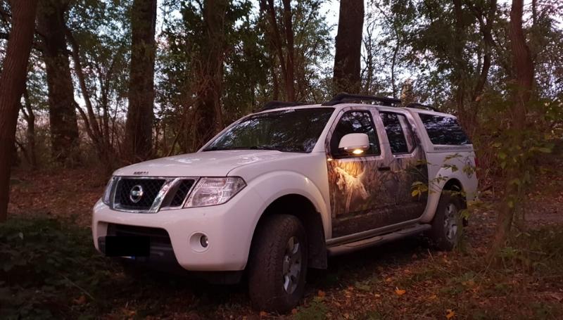 Noleggio furgoni trasporto cani – Nissan Navara