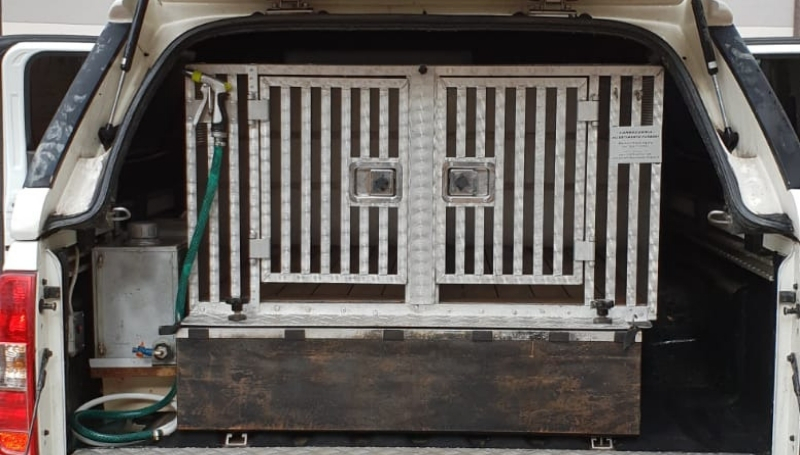 Noleggio furgoni trasporto cani – Nissan Navara_7