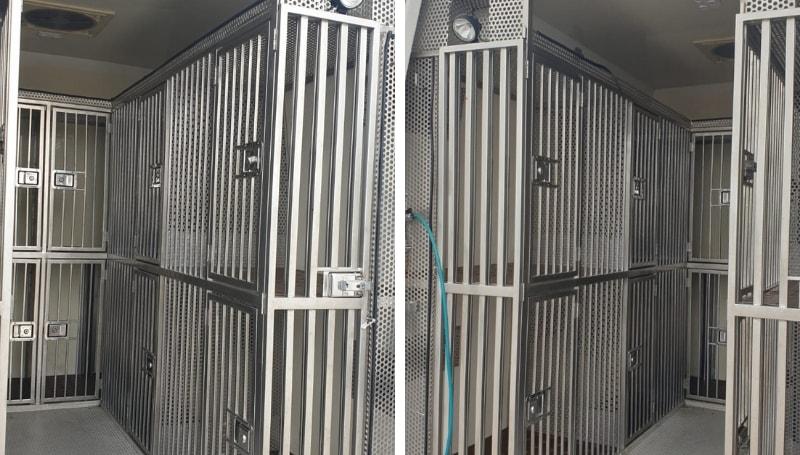 Noleggio Furgoni Trasporto cani – Mercedes Sprinter 6 posti