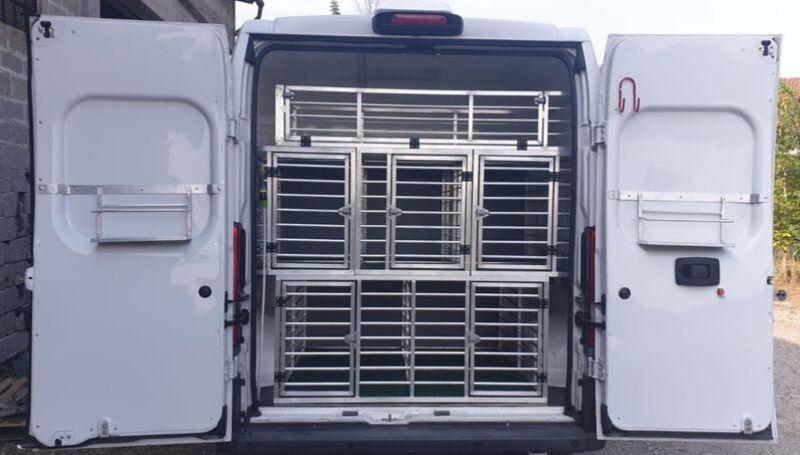 Noleggio Furgoni Trasporto cani – Fiat Ducato 7 posti + 17 cani